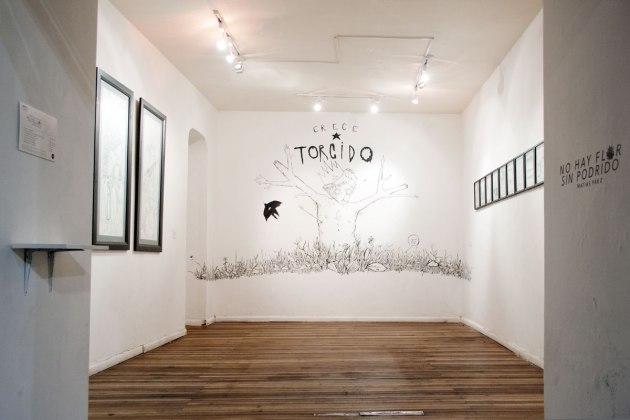 No Hay Flor Sin Podrido - Vista general exposición