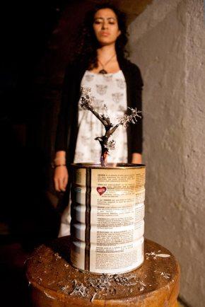"""""""Bonsái"""" – Alejandra Miranda"""