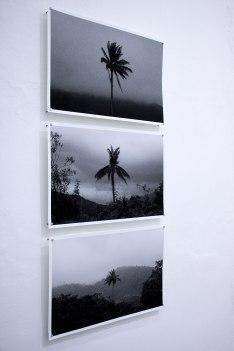 Paraísos oscuros - Boloh Miranda Izquierdo