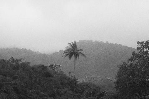 ST (Tristes trópicos) | Boloh Miranda Izquierdo | Fotografía toma directa | 42 x 30 cm | Ed 1/5 | 120 USD (sin marco)