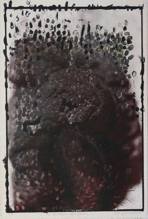 La sinrazón excremental | Jenny Jaramillo | Litografía | 96 x 64 cm | P/A | 1998 | 400 USD (Sin marco)