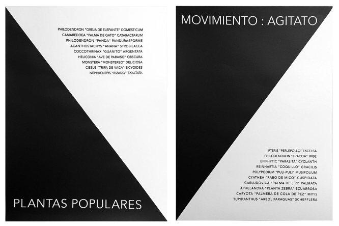 ST (Movimiento : Agitato) | Rometti Costales | Serigrafía | 67,5x50 cm | 2013 | PA 2/2 | $200 (Sin marco)